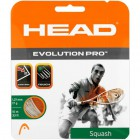 Струны HEAD Evolution PRO